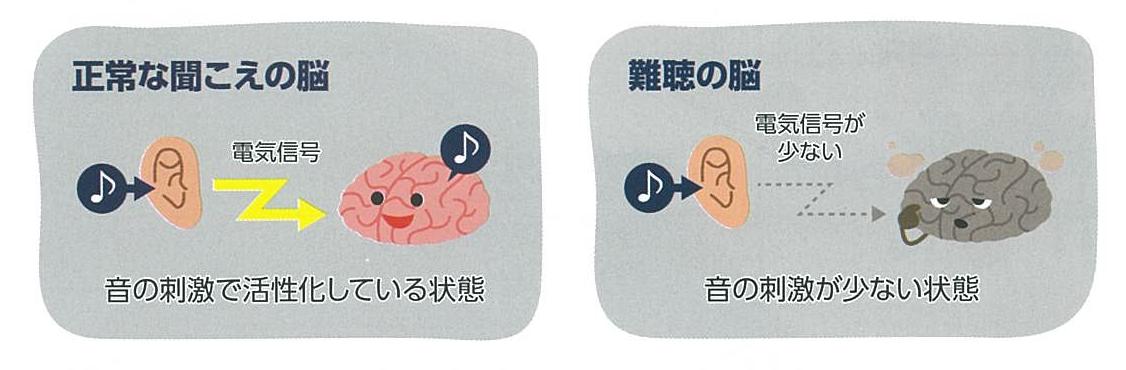 から する が 耳 音